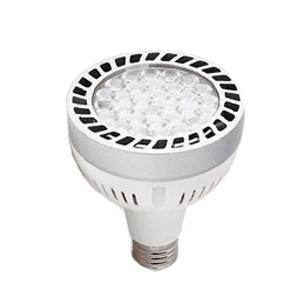 หลอดPAR30 LED-30W